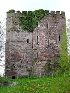 Brecon Tower