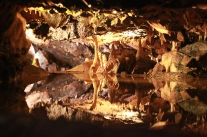 Cheddar Gorge - caves