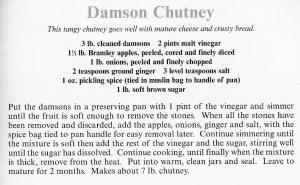UK - Essex - Damson Chutney
