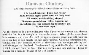 UK - Essex - Damson Chutney