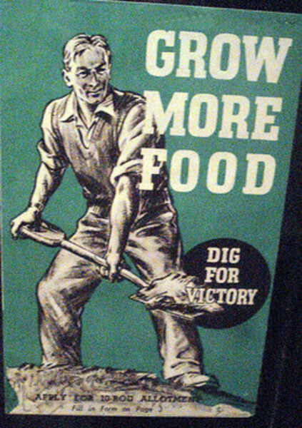 Grow More Food!