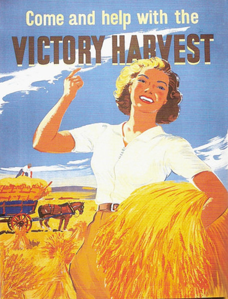 Victory Harvest