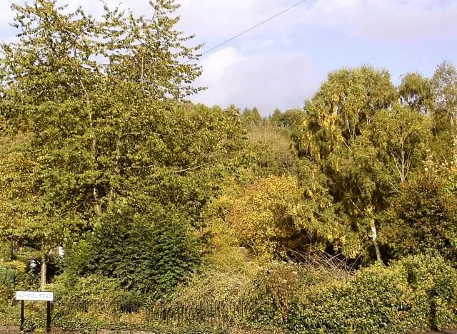 Coalbrookdale, Shropshire 019