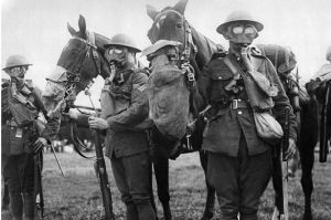 Horses and men in gas-masks