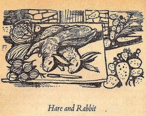 Mediterranean Cookery - Hare and Rabbit - Image